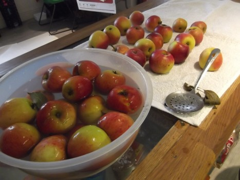 """""""Apples I prepared earlier.""""... in bowl of boiling water"""