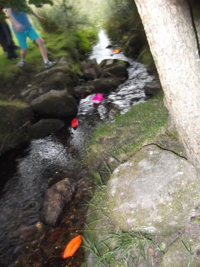 Racing paper boats in Wray Brook